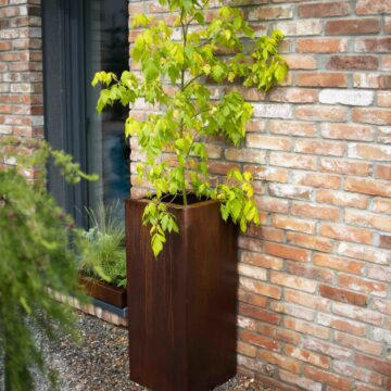 Planter Rectan Viridi Space